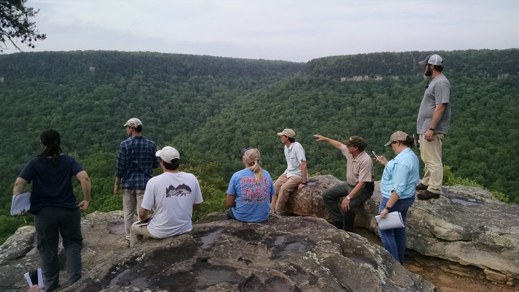 A group of students observe green hills at Fall Creek